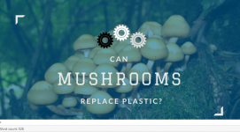 Can Mushrooms Replace Plastic?